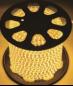 Светодиодная лента герметичная повышенной яркости 220 Вольт, 300 х 5050 SMD, 14.4 Вт/м, IP 67, бухта 50 метров, цвет желтый
