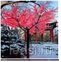 Светодиодное дерево VST-6912L