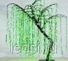 Светодиодное дерево 'Ива' 170/120 см